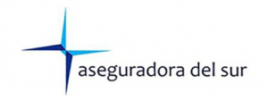 aseguradora_del_sur1